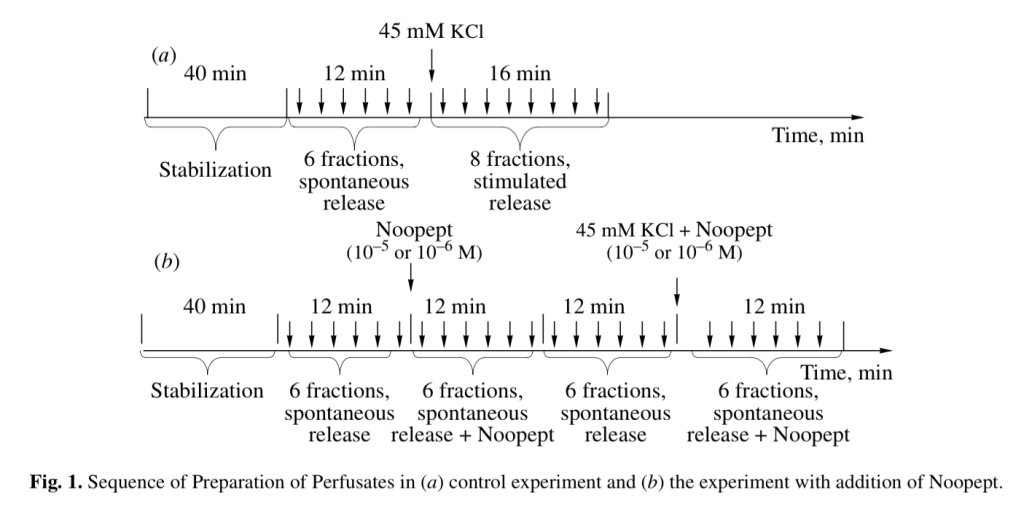 Sequence of Preparation of Perfusates in (a) control experiment and (b) the experiment with addition of Noopept.