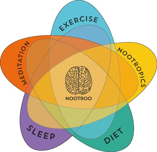 nootroo-protocol-500x485